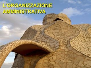 L'ORGANIZZAZIONE AMMINISTRATIVA
