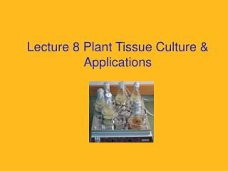 Lecture 8 Plant Tissue Culture  Applications