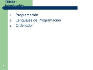 Programación Lenguajes de Programación Ordenador