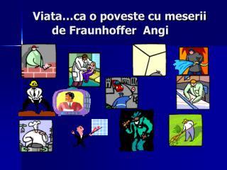 Viata…ca o poveste cu meserii        de Fraunhoffer  Angi
