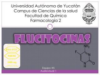Universidad Autónoma de Yucatán Campus de Ciencias de la salud Facultad de Química  Farmacología 2