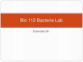 Bio 112 Bacteria Lab
