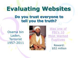 Evaluating Websites