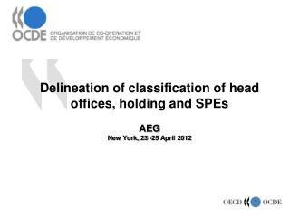 Delineation of classification of head offices, holding and SPEs AEG  New York, 23 -25 April  2012
