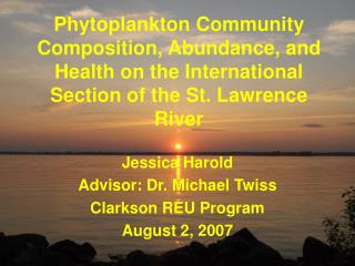 Jessica Harold Advisor: Dr. Michael Twiss Clarkson REU Program August 2, 2007
