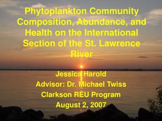 Jessica Harold Advisor: Dr. Michael Twiss Clarkson REU Program August 2, 2007