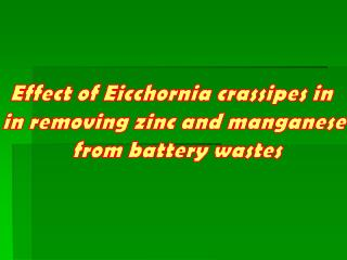Effect of Eicchornia crassipes in  in removing zinc and manganese  from battery wastes