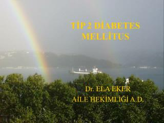 TIP 2 DIABETES MELLITUS