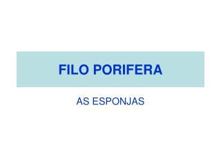 FILO PORIFERA