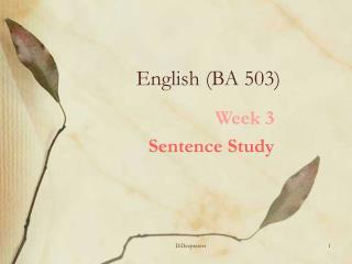 English (BA 503)