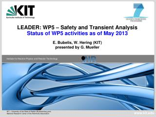 LEADER: WP5 – Safety and Transient Analysis Status of WP5 activities as of May 2013