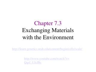 Chapter 7.3 Exchanging Materials  with the Environment