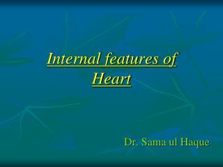 Internal features  of  Heart