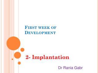 First week of Development