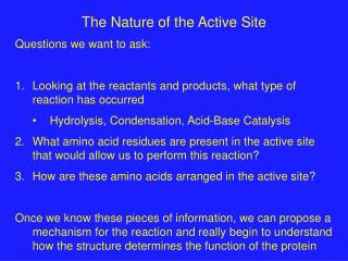 The Nature of the Active Site