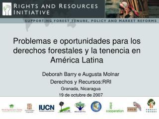 Problema s e oportunidades  para los derechos forestales y la tenencia en Am érica Latina