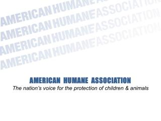 AMERICAN  HUMANE  ASSOCIATION The nation�s voice for the protection of children & animals