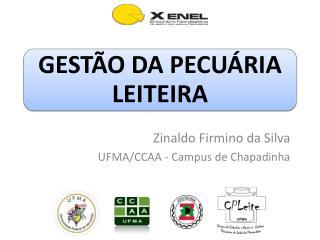 Zinaldo  Firmino da Silva UFMA/CCAA - Campus de Chapadinha