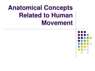Anatomical Concepts Related to Human Movement