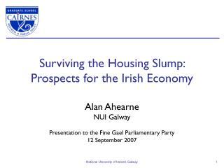 Surviving the Housing Slump:  Prospects for the Irish Economy