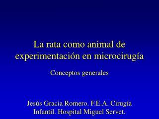La rata como animal de experimentación en microcirugía