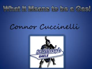Connor Cuccinelli