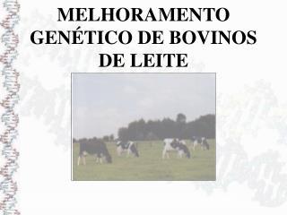 MELHORAMENTO GENÉTICO DE BOVINOS DE LEITE