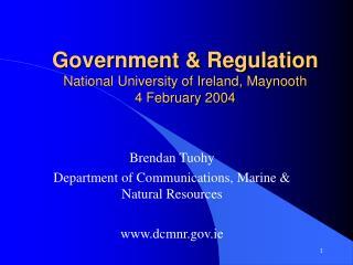 Government & Regulation National University of Ireland, Maynooth  4 February 2004