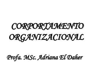 CORPORTAMENTO ORGANIZACIONAL