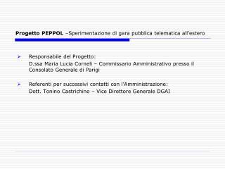 Progetto PEPPOL  –Sperimentazione di gara pubblica telematica all'estero