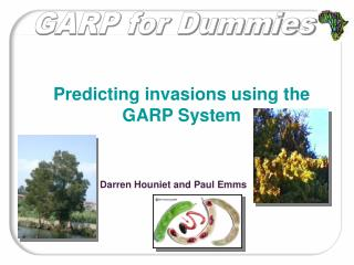 GARP for Dummies