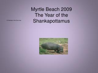 Myrtle Beach 2009  The Year of the Shankapottamus
