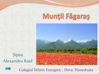 Munții  Făgaraș