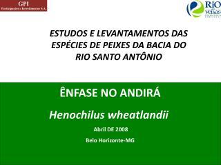 ESTUDOS E LEVANTAMENTOS DAS ESPÉCIES DE PEIXES DA BACIA DO RIO SANTO ANTÔNIO