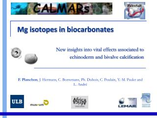 Mg isotopes in  biocarbonates