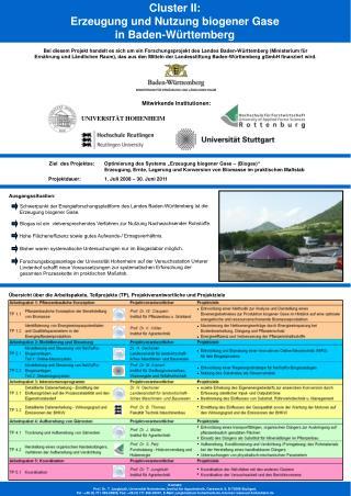Übersicht über die Arbeitspakete, Teilprojekte (TP), Projektverantwortliche und Projektziele