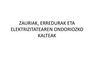 ZAURIAK, ERREDURAK ETA ELEKTRIZITATEAREN ONDORIOZKO KALTEAK