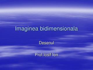 Imaginea bidimensionala