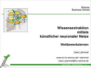 Wissensextraktion  mittels künstlicher neuronaler Netze Wettbewerbslernen