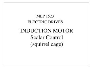 INDUCTION MOTOR Scalar Control (squirrel cage)