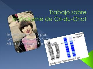 Trabajo sobre El síndrome de  Cri -du-Chat