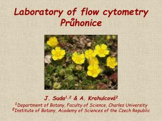 Laboratory of flow cytometry Průhonice