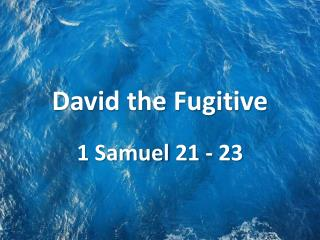 David the Fugitive