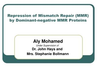 Repression of Mismatch Repair (MMR) by Dominant-negative MMR Proteins