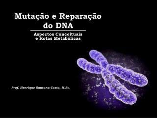 Mutação e Reparação do DNA