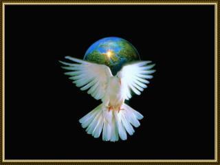 A Paz que Trago em Meu Peito