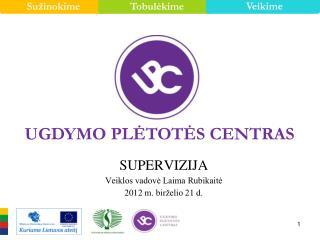 SUPERVIZIJA Veiklos vadovė Laima Rubikaitė 2012  m. birželio 2 1 d.