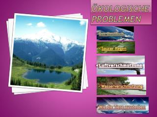 Ökologische Problemen