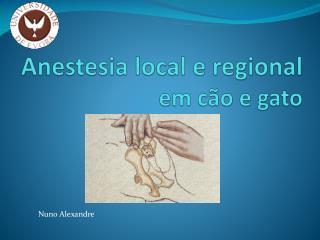 Anestesia local e regional  em c�o e gato