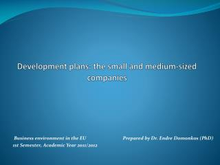 Development plans: the small and medium - sized companies